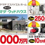 新春ワイド時代劇「大江戸捜査網」お年玉プレゼント|ヤマダ電機