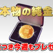 PS純金 本物の純金50万円相当プレゼント!