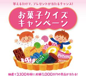 お菓子クイズキャンペーン2015